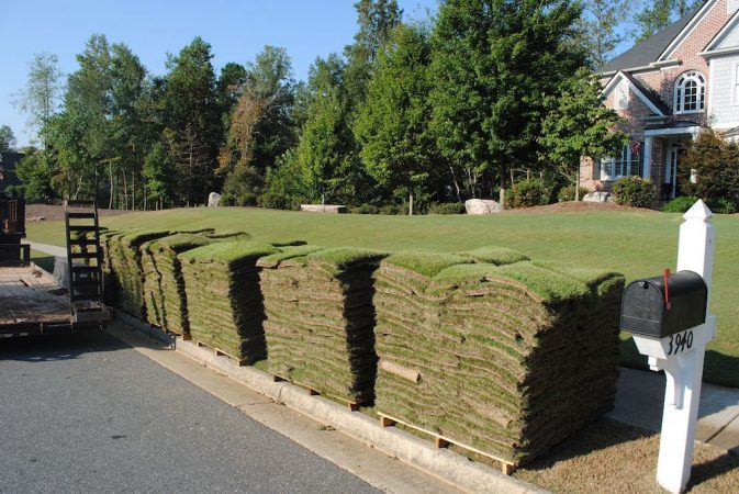 06-Sod Types How to choose the right sod for your home or business landscaping